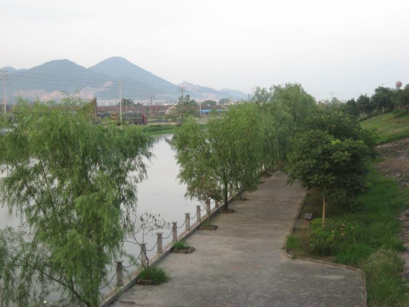 张坝桂圆林风景区