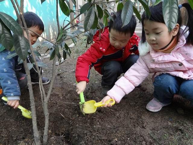久雨初晴的日子里,湖州市实验幼儿园的小朋友们在老师的带领下,进行了一次我和小树一起成长的种植活动。    在活动中,老师给孩子们讲了植树节的来历;讲了生动有趣的环保故事,让幼儿对什么是植树节、植树节的意义,有了更多的了解。接着,老师带领孩子们漫步走在幼儿园里,寻找美丽的花园中悄悄来到大家身边的春姑娘,感受春天万物复苏的变化,激发爱护花草树木的情感;孩子们走进了幼儿园里的种植园地,挽起袖子为自己种下的小苗清除垃圾、为它们浇水。   通过这次种植活动,不仅加深了孩子们的环保意识,更让他们深刻感受到美化环