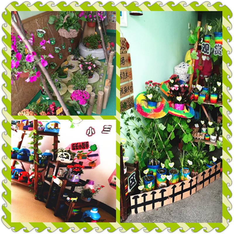 我和植物共成长——记菱湖镇幼儿园植物角评比活动
