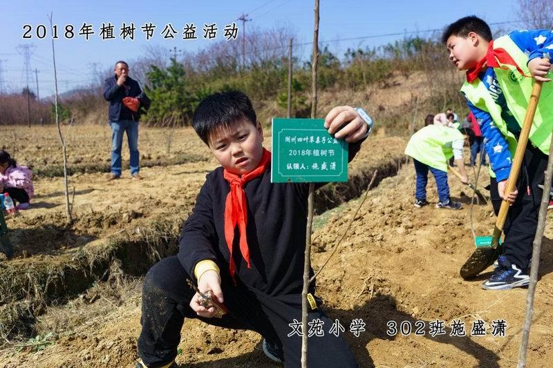 """12""""植树节前后,文苑小学各中队精心打造属于自己的植物角,整个校园"""